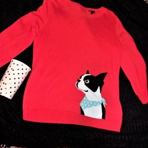 small fun woman boston terrier dog sweater red